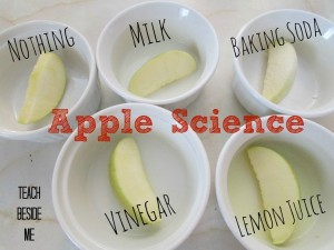 apple-science-experiment-1024x768